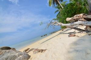 pulau-cantik-di-indonesia, karimun-beach